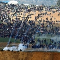 Israeli forces kill 14 Palestinians, wound Hundreds in March of Return