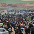 Hundreds killed, thousands wounded: A year of Gaza rallies