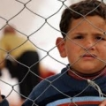 UN:Violence displaces 70-80% of Palestinian refugees in Syria