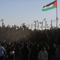 Palestinian refugees in Lebanon celebrate Hamas victory over Israel